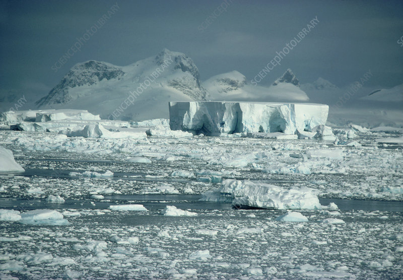 Bergs and pack-ice off the coast of the Antarctic