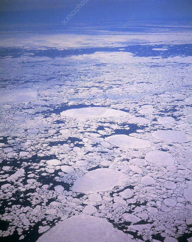 Aerial view of sea ice off Greenland