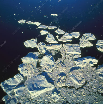 View of compacted icebergs in the sea by Greenland