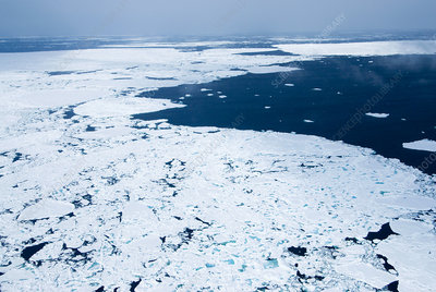 Melting Arctic sea ice, aerial photograph