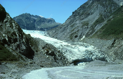 Terminal face of Fox Glacier