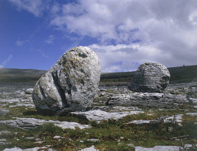 Glacial erratics resting on a limestone pavement