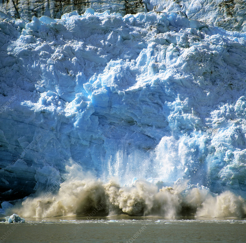 Childs glacier calving as it reaches the sea