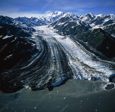 The Turner glacier entering the sea