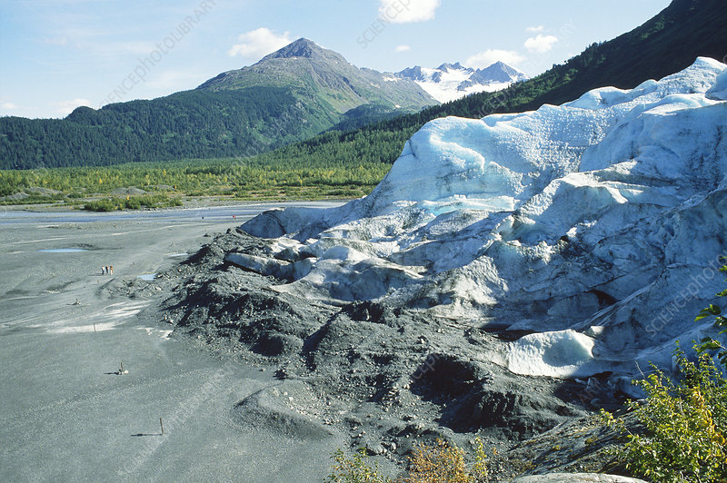 Terminal moraine at Exit Glacier
