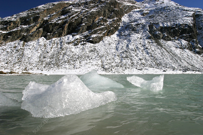 Icebergs from the Roseg glacier