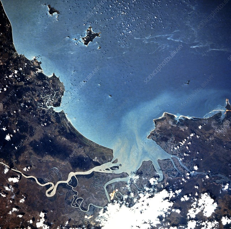 Plankton bloom off the Queensland coast