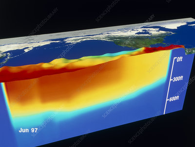 1997 El Nino Pacific sea levels and temperatures