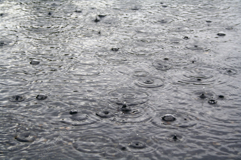 Raindrops on a water surface