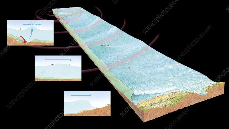 Catastrofe E275053-Tsunami_formation-SPL