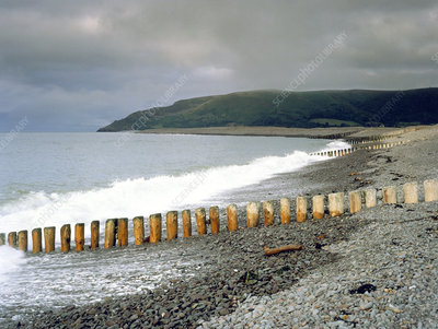 Wooden groyne on coastline
