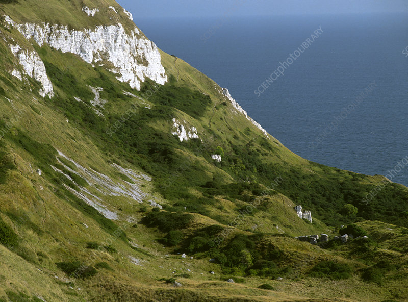 View of cliffs at White Nothe, Dorset