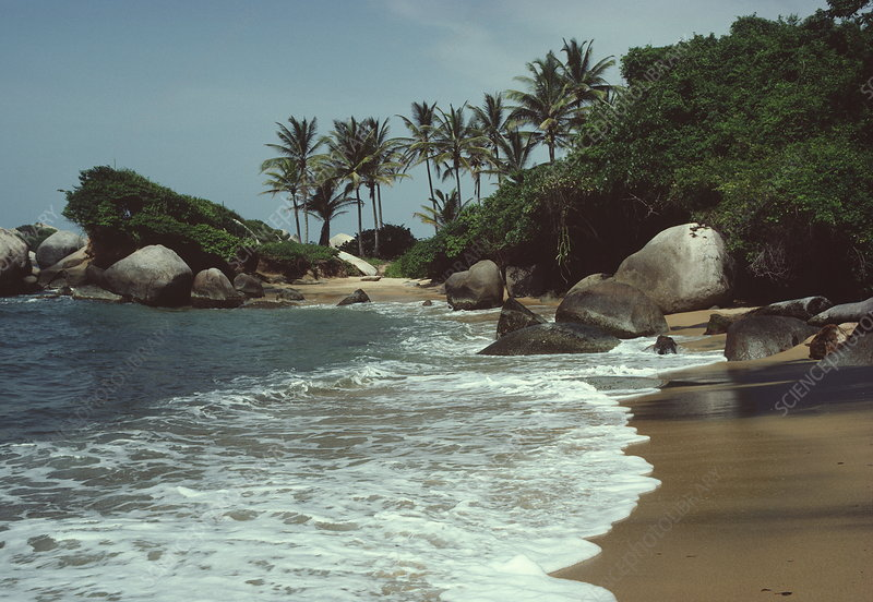 Coastline near Tairona, Colombia