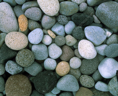 Close-up of rounded pebbles on a shoreline