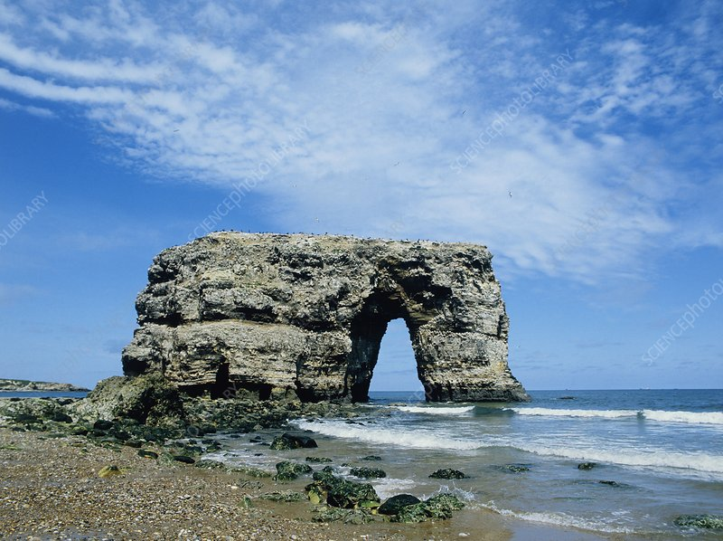 Eroded arch called Marsden Rock