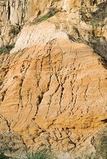 Eroded sandstone cliff face