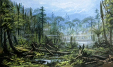 Artist's impression of a Carboniferous forest.