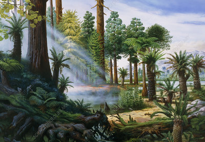 Artwork of a Carboniferous forest