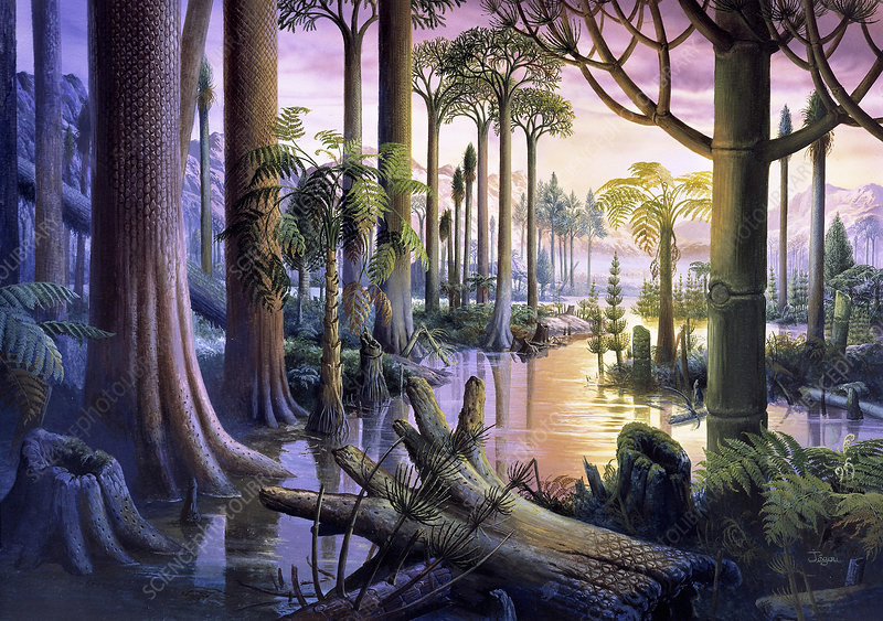 Carboniferous Forest Stock Image E4020140 Science Photo Library