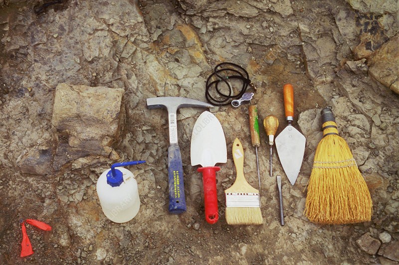 Tools used to excavate dinosaur fossils