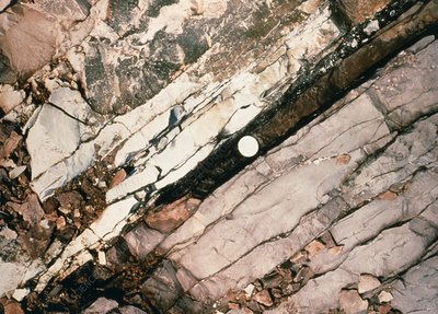 K/T boundary layer of clay and iridium, Italy