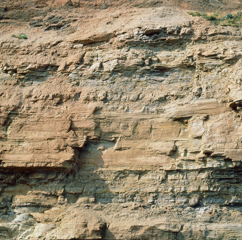 Macrophotograph of sandstone and shale cliff
