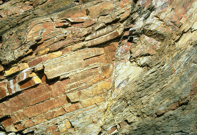 Folded rock strata and a fault