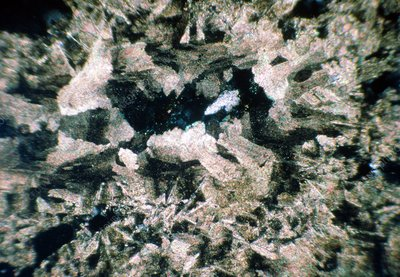 Micrograph of various crystals of dolomite