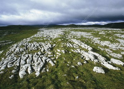 Carboniferous limestone pavement, Malham Cove