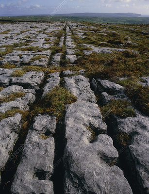 Carboniferous limestone pavement with ridges/cleft