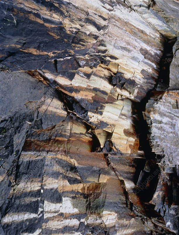 Shale strata in a cliff face