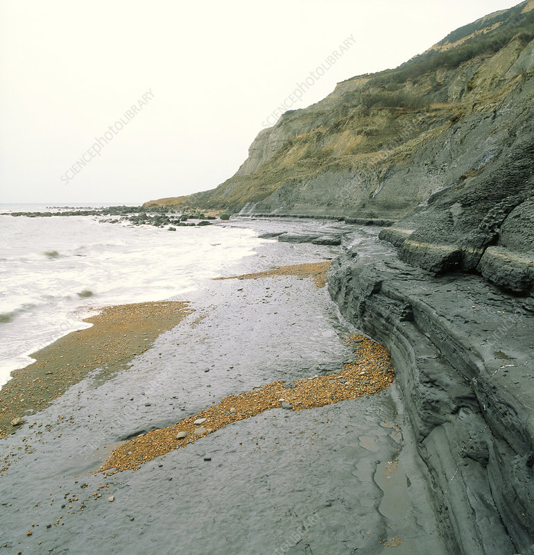 Lower Lias rock strata in Dorset, England