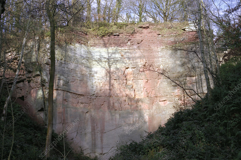 Exposed sandstone at a disused quarry