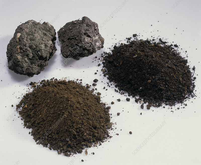 Soil samples stock image e416 0101 science photo library for Soil library