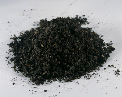 Loam soil stock image e416 0105 science photo library for Soil library