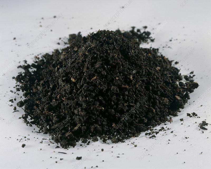 What Is Loam Soil? - WorldAtlas.com