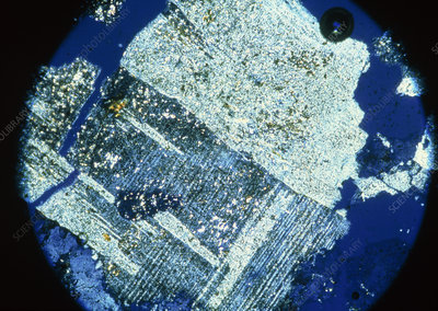 LM of feldspar crystals in thin section of granite