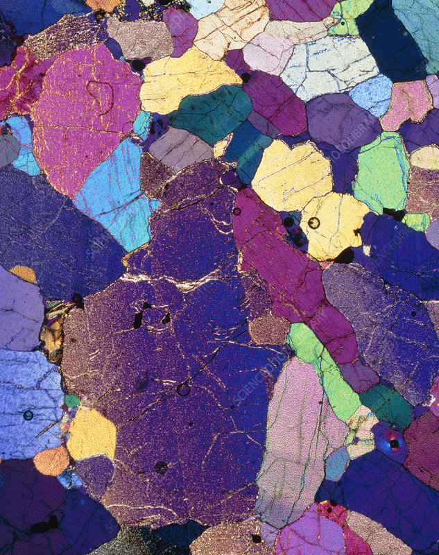 Polarised LM of a thin section of monzonite rock