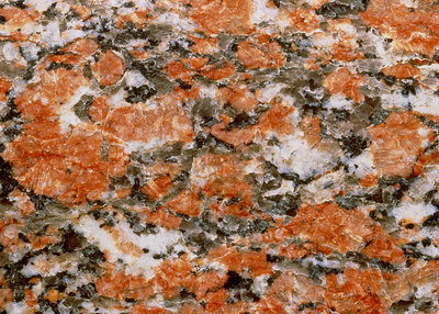 Cut surface of rapakivi granite