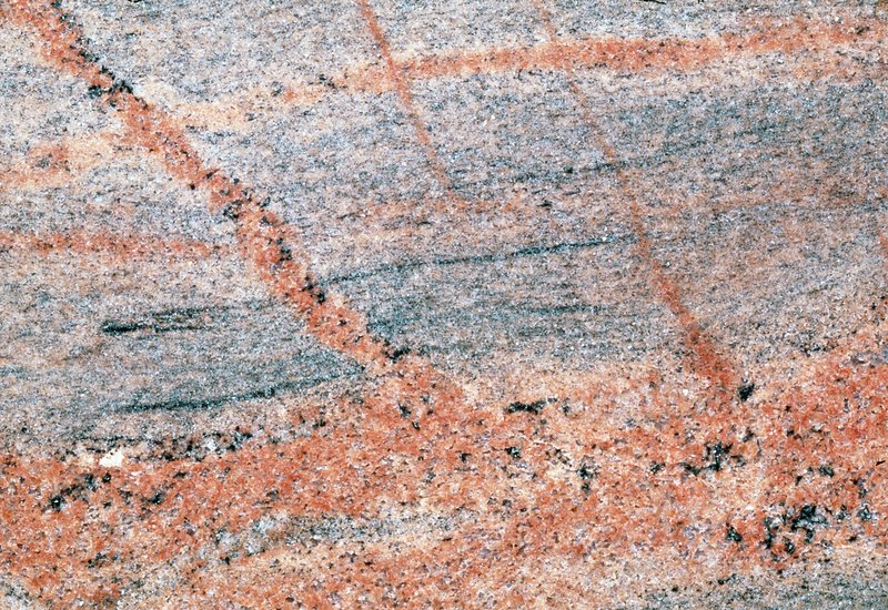 Cut surface showing granite invading gneiss