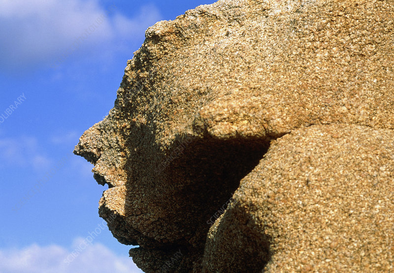 Profile of a face in rhyolite rock cliff