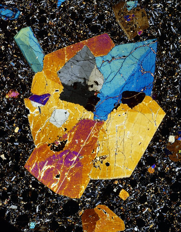 Twinned augite crystals, LM