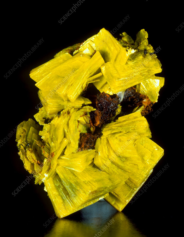 Aggregate of yellow autunite crystals