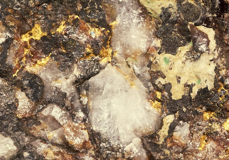 Macrophotograph of quartz and native gold