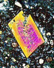 Pyroxene crystal, thin section