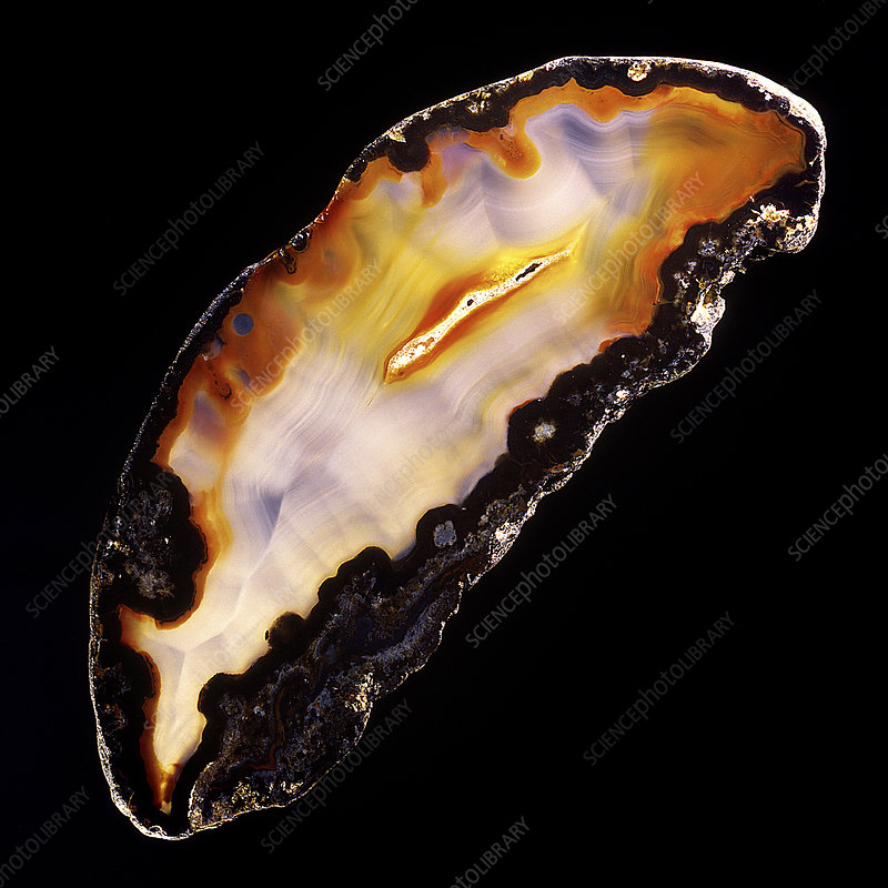 Cut and polished agate