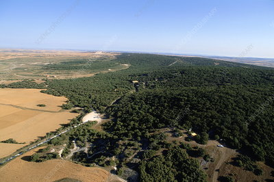 Aerial view of Sierra de Atapuerca, Spain