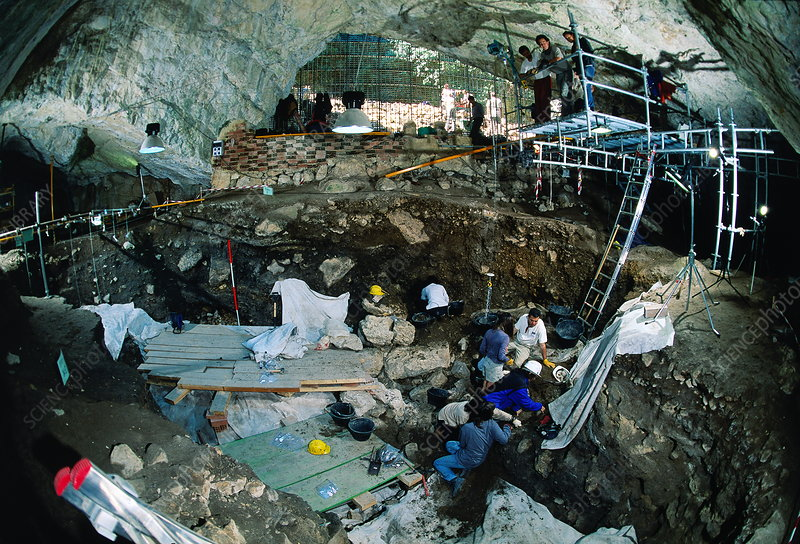 Excavations at Cueva Mayor