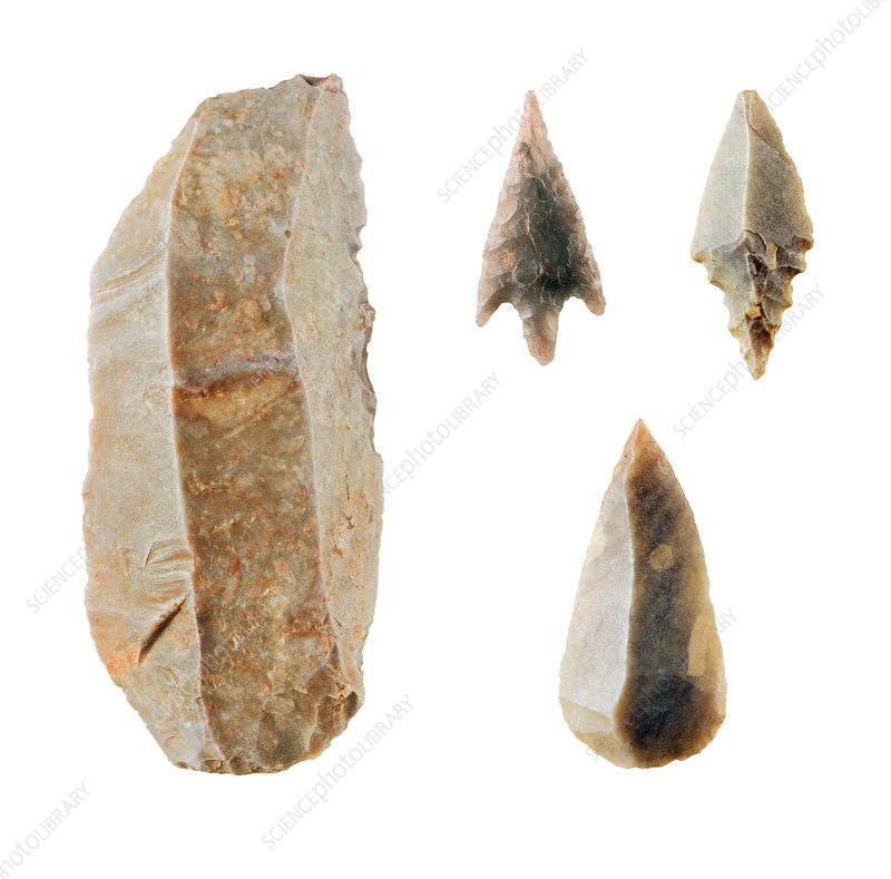 Neolithic flint tools.