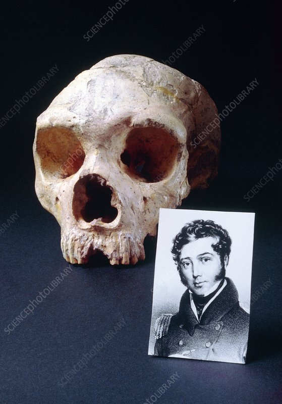 Composite: George Busk and skull of Gibraltar man